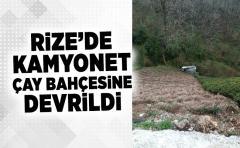 Rize'de Kamyonet Yaş Çay Bahçesine Devrildi