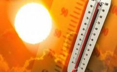 Rize'de Sıcaklıklar Mevsim Normallerinin Üzerine Çıktı