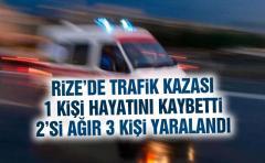 Rize'de Trafik Kazası 1 Ölü, 1'i Ağır 2 Yaralı