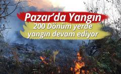 Pazar Dernek köyünde örtü yangını meydana geldi